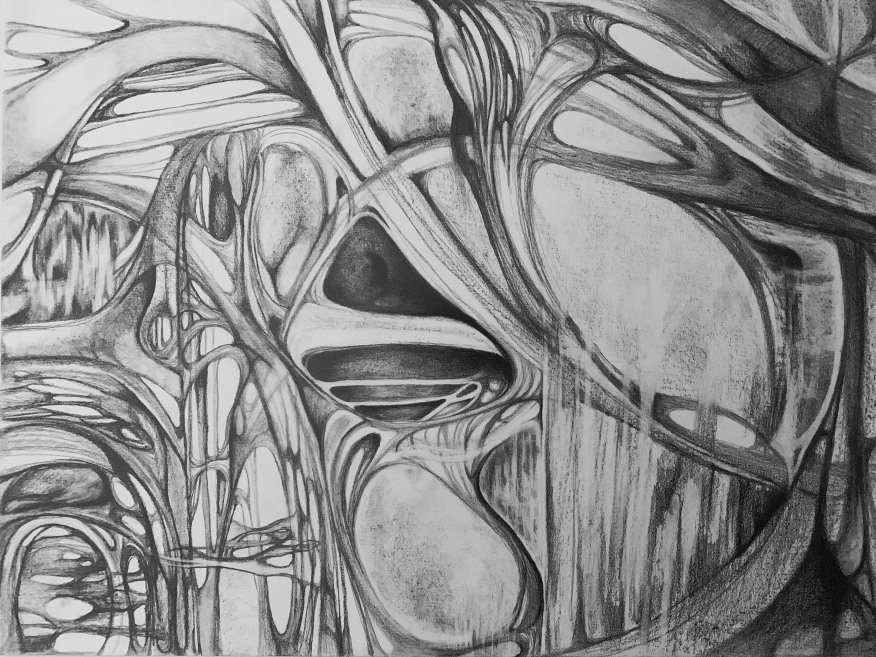 Saeed_Mold_18x24in_graphite